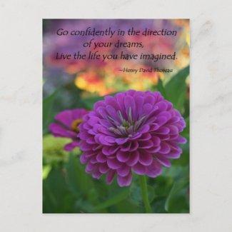 Inspirational postcards bulk discount Zinnia postcard