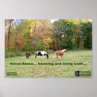 Inspirational Poster - Horse Sense 1