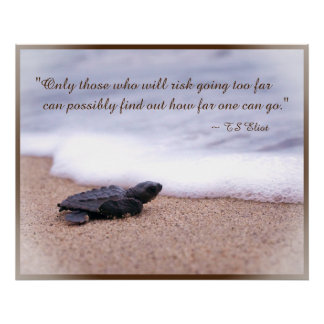 Inspirational Quote Baby Sea Turtle Sand Ocean Print