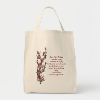 Inspirational Quote Just For Today Tote Bag