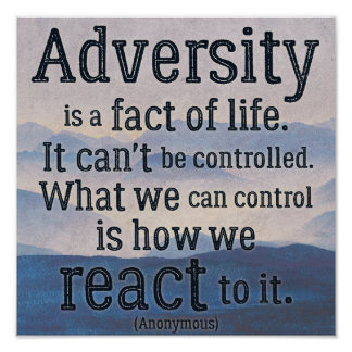 Inspirational Quote on Adversity Poster