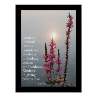 Inspirational Quotes and Sayings Lao Tzu Poster