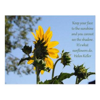 Inspirational Sunflower Postcard