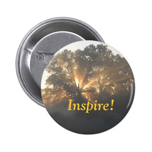 Inspire Pins