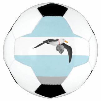 Inspired by The Rime of the Ancient Mariner Soccer Ball