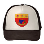 Inspired by the Vessel from the coat of arms Mesh Hat