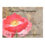Inspired Photography Postcards