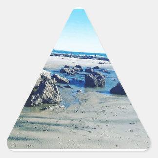 Inspired Tidepool Triangle Sticker