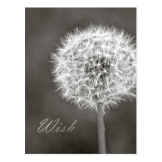 Inspired Wish Dandelion Postcard