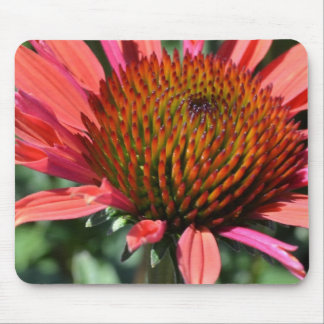 Inspiring Purple Coneflower Mouse Pad