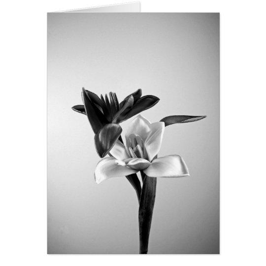 Inspiring Tulips Card
