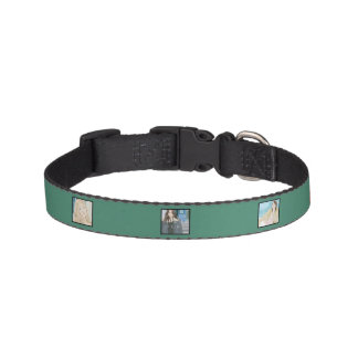 Instagram 6-Photo Green Personalized Dog Collar