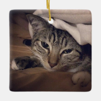 Instagram Pet Photo Two Sided Christmas Ornament