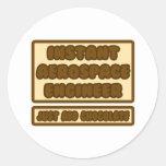 Instant Aerospace Engineer ... Add Chocolate Stickers