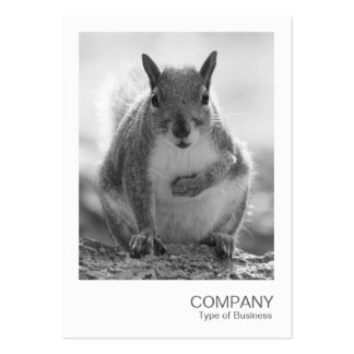 Instant Photo 045 - Grey Squirrel BW Business Card Template