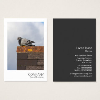 Instant Photo 082 - Good Morning Pigeon Business Card