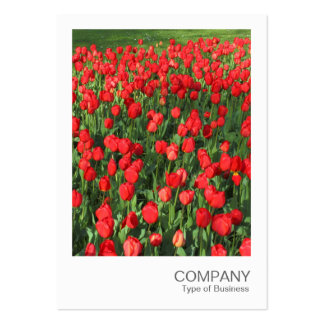 Instant Photo 087 - Bed of Red Tulips 02 Large Business Card