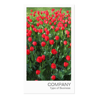 Instant Photo - Bed of Red Tulips 01 Business Card