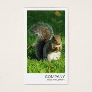 Instant Photo - Grey Squirrel Eating Nuts Business Card
