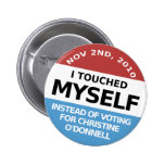 ...Instead Of Voting For Christine O'Donnell Pinback Buttons