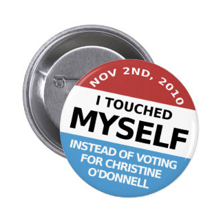 ...Instead Of Voting For Christine O'Donnell Pin