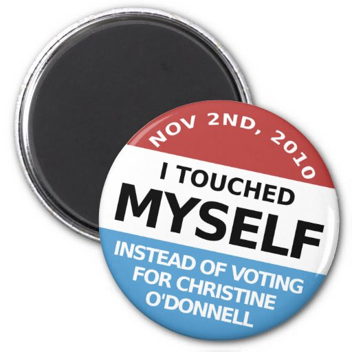 ...Instead Of Voting For Christine O'Donnell Magnet