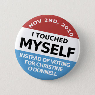 ...Instead Of Voting For Christine O'Donnell Pinback Button