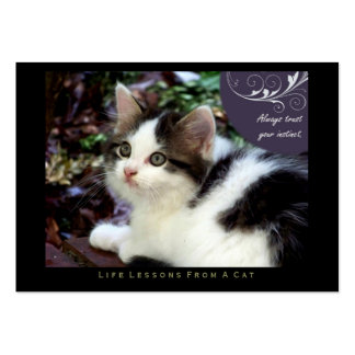 Instinct Life Lessons From a Cat ACEO Art Cards Business Card Templates