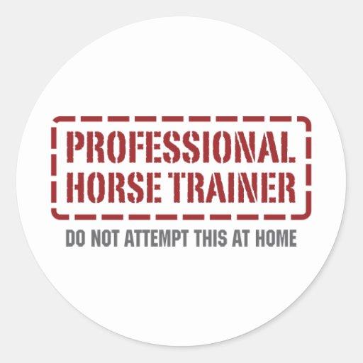 Instructor de caballo profesional etiqueta redonda