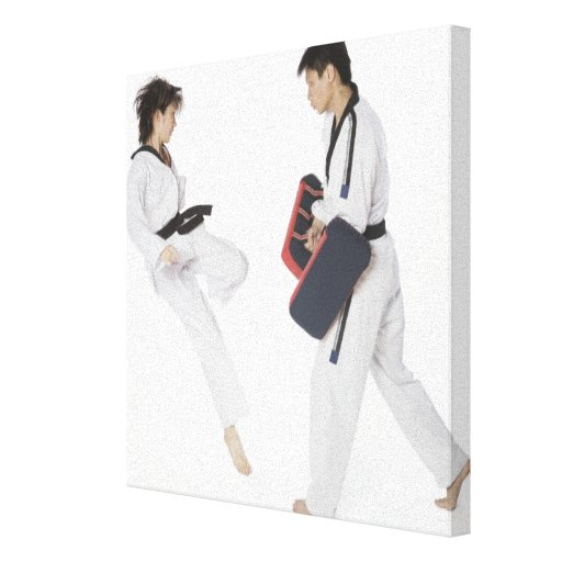 Instructor de sexo femenino del karate que enseña  lona estirada galerias
