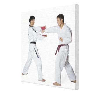 Instructor de sexo masculino del karate que enseña impresión en lona estirada