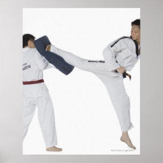 Instructor de sexo masculino del karate que enseña posters