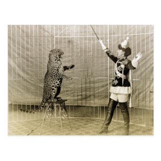 Instructor del circo del vintage postales