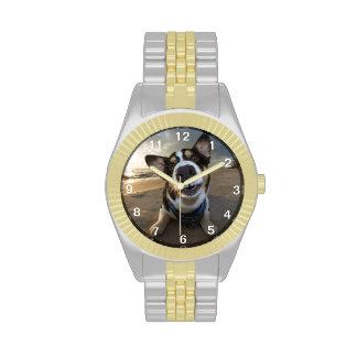 Instructor romántico relojes
