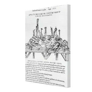 Instruments for Dissections, illustration from 'De Canvas Print