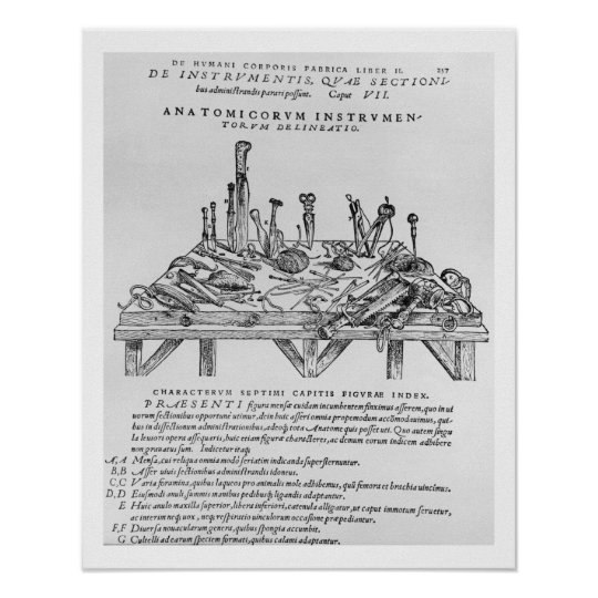 Instruments for Dissections, illustration from 'De Poster
