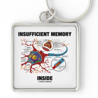 Insufficient Memory Inside (Neuron / Synapse) Keychain