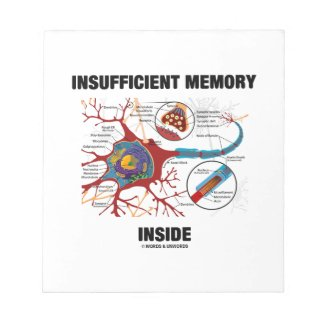 Insufficient Memory Inside (Neuron / Synapse) Scratch Pad