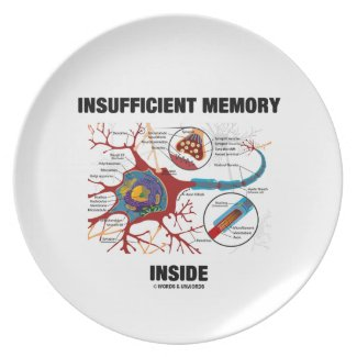 Insufficient Memory Inside (Neuron / Synapse) Dinner Plates