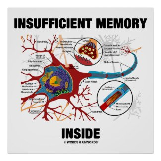 Insufficient Memory Inside (Neuron / Synapse) Print