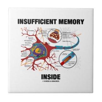 Insufficient Memory Inside (Neuron / Synapse) Tiles