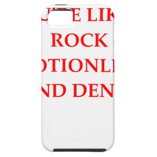 insult iPhone SE/5/5s case