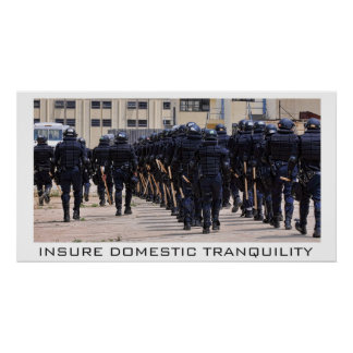 Insure Domestic Tranquility Poster