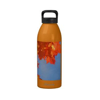 Inteligente diversifique sus tenencias hacen la pr botella de agua