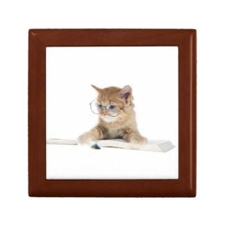 Intellectual Kitten Trinket Boxes