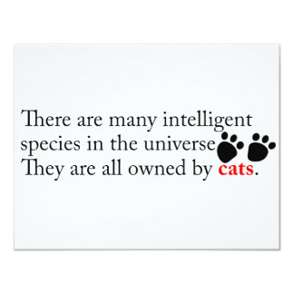 Intelligent Cats Own Us Card