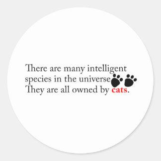 Intelligent Cats Own Us Classic Round Sticker
