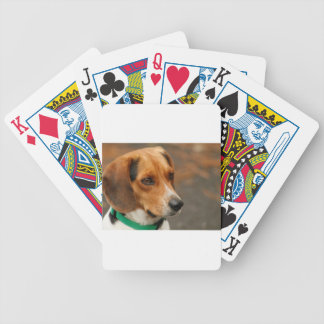 Intelligent Focussed Beagle Hunting Dog Bicycle Poker Cards