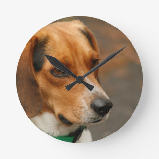 Intelligent Focussed Beagle Hunting Dog Round Clock