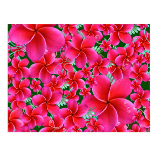 Intense Pink Flowers Postcard